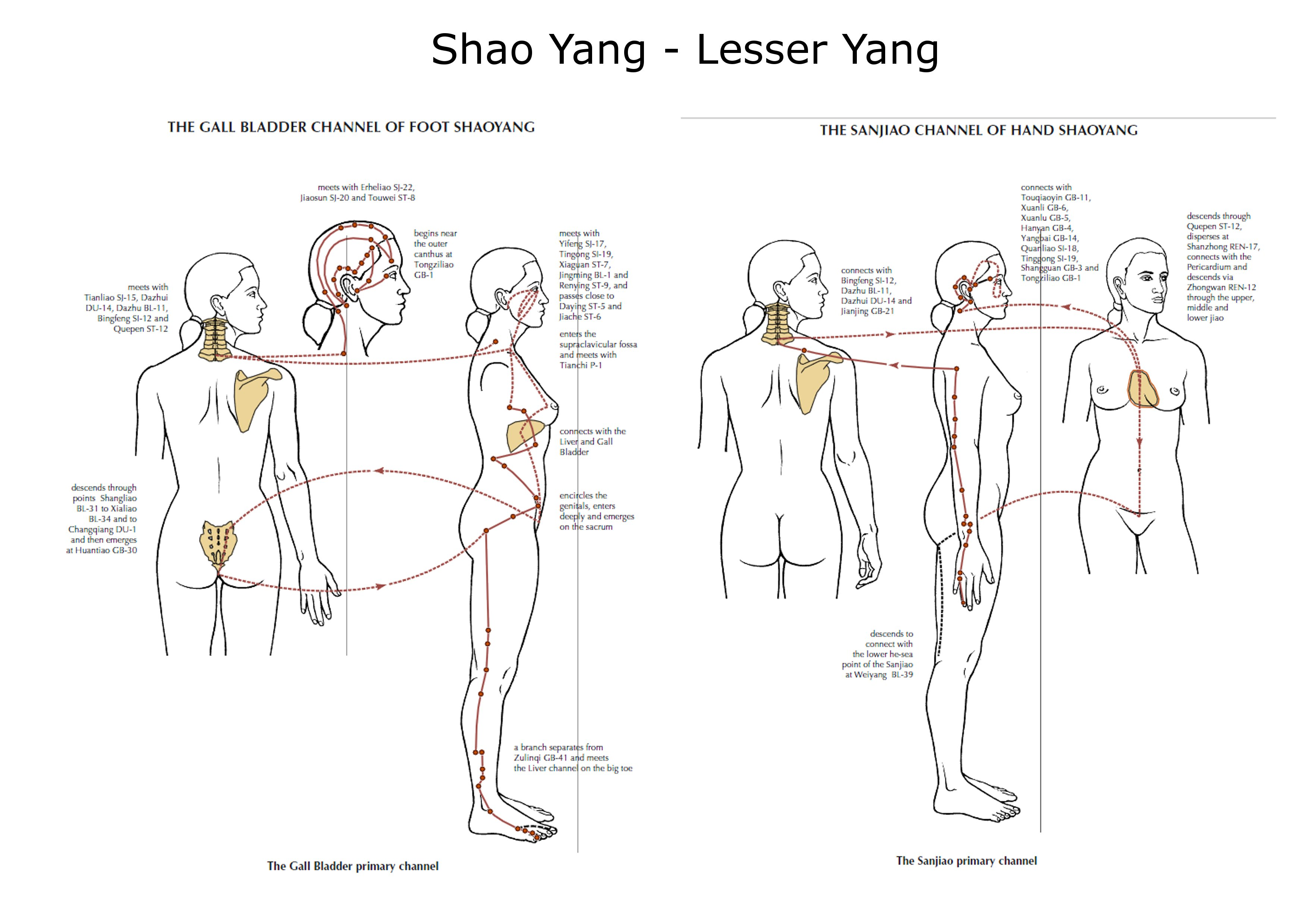 tai yang shao yang jang min tai yin shao yin jue yin