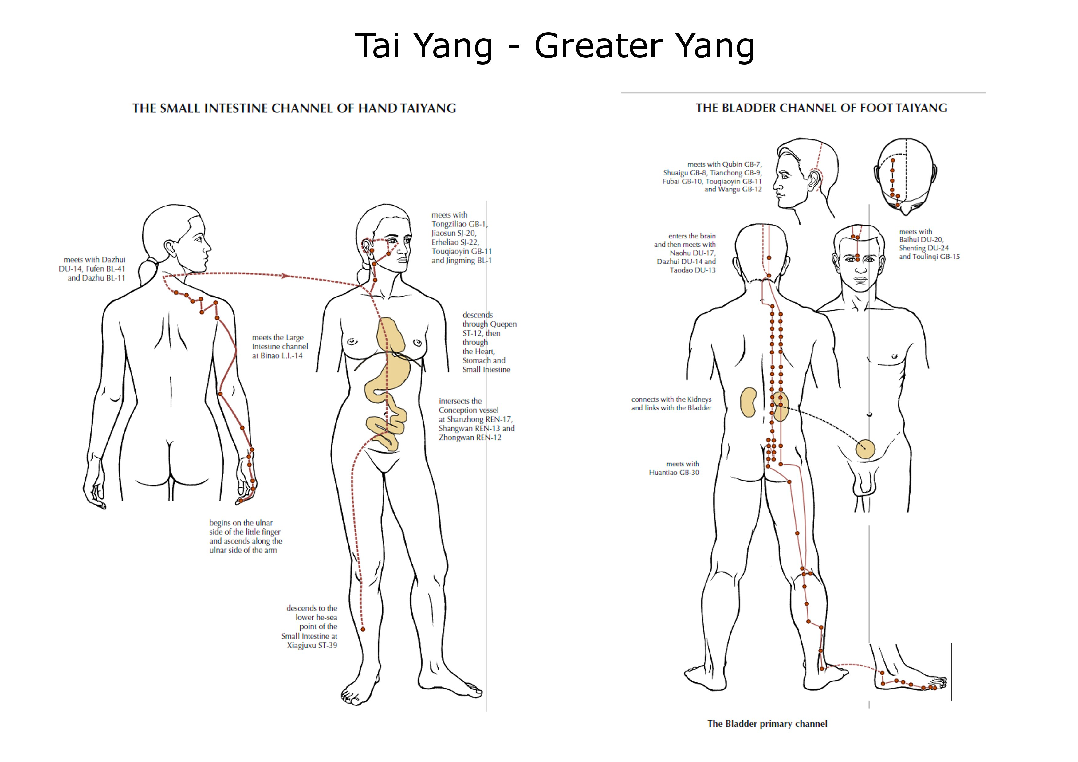 Tai yang you er